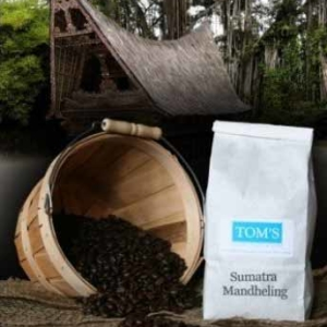 Sumatran Dark